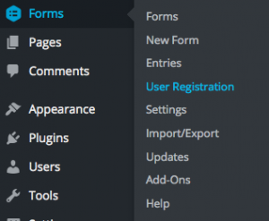 user-registration-create-site-1